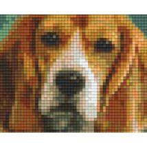 Basset hound (10,1x12,7cm)