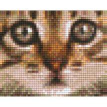 Macskafej (10,1x12,7cm)