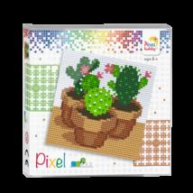 Pixel szett 4 alaplapos - Kaktusz