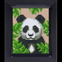 Pixel készlet - Panda (dzsungel)