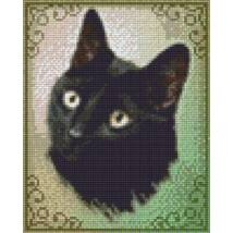 Cat Saar (20,3x25,4cm)