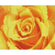 Sárga rózsa (25,4x20,3cm)
