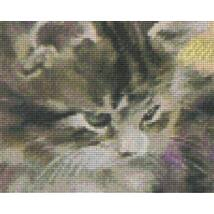 Szürke macska (25,4x20,3cm)