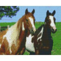 Két ló (25,4x20,3cm)