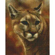 Puma 2 (20,3x25,4cm)