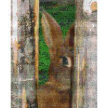 Félős nyuszi(20,3x25,4cm)