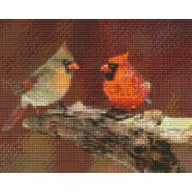 Cardinal (25,4x20,3cm)