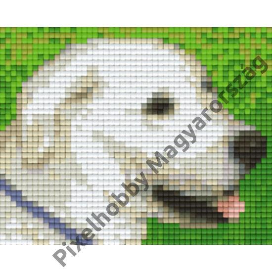 Labrador (12,7x10,1cm)