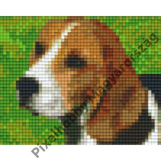 Beagle (10,1x12,7cm)