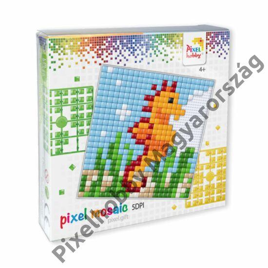 Pixel XL szett - Csikóhal (12x 12 cm)