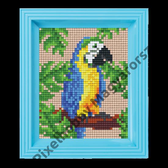 Pixel készlet - PAPAGÁJ (dzsungel)