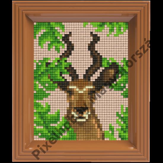 Pixel készlet - ANTILOP (dzsungel)