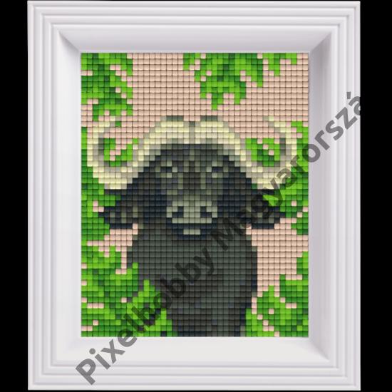 Pixel készlet - BIVALY (dzsungel)
