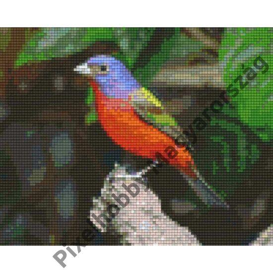 Bird on branch L (25,4x20,3cm)
