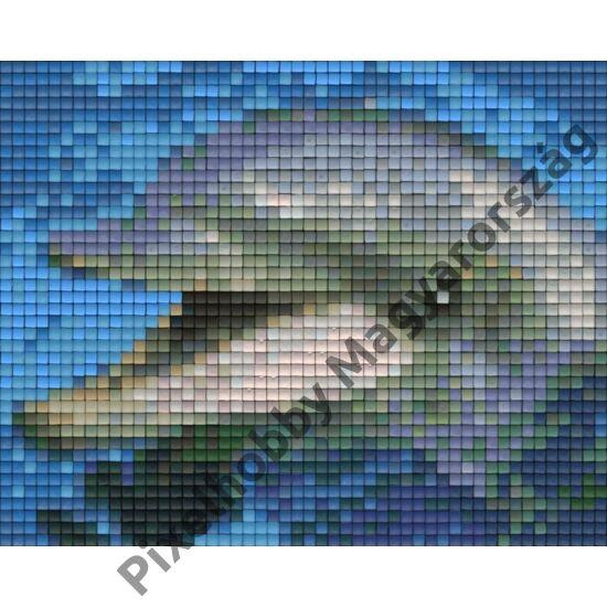 Pixelhobby minta - Delfin