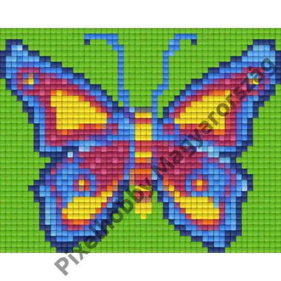 Kék-zöld pillangó (12,7x10,1cm)