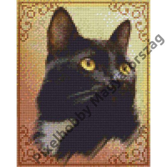 Cat Moore (20,3x25,4cm)