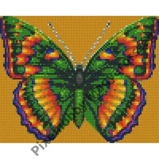 Sokszínű pillangó (25,4x20,3cm)