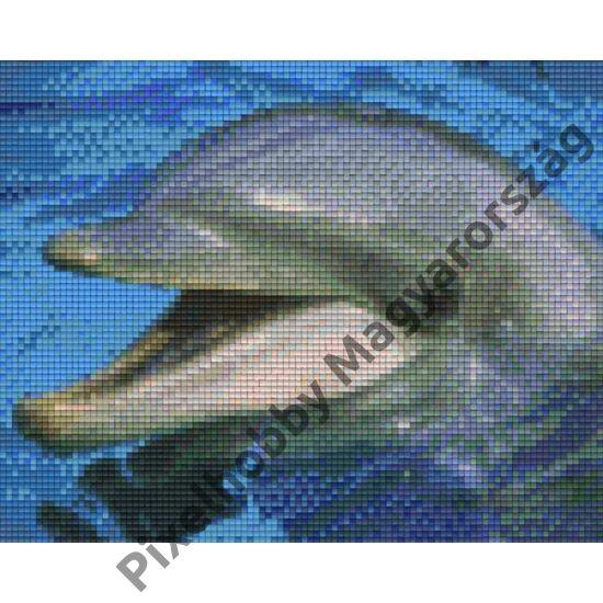 Delfin 2 (25,4x20,3cm)