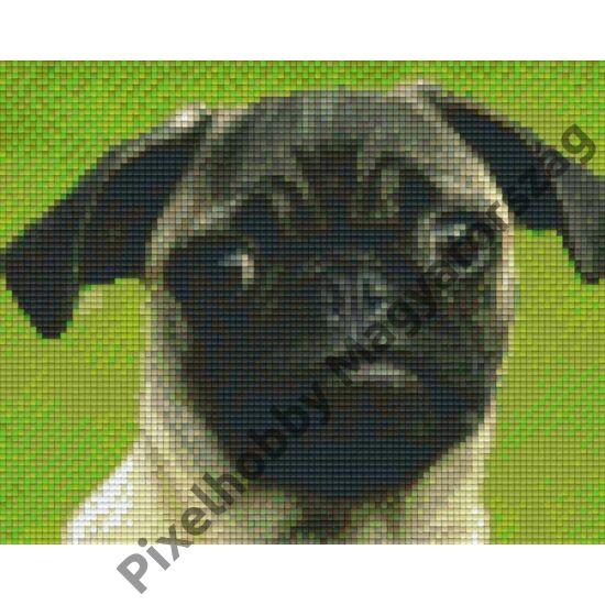 Kutya 2 (25,4x20,3cm)