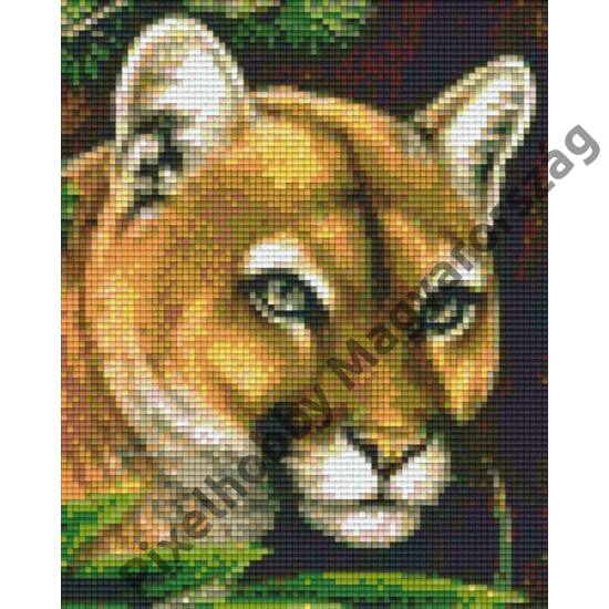 Puma 1 (20,3x25,4cm)