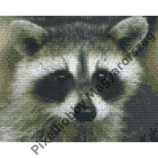 Mosómedve (25,4x20,3cm)