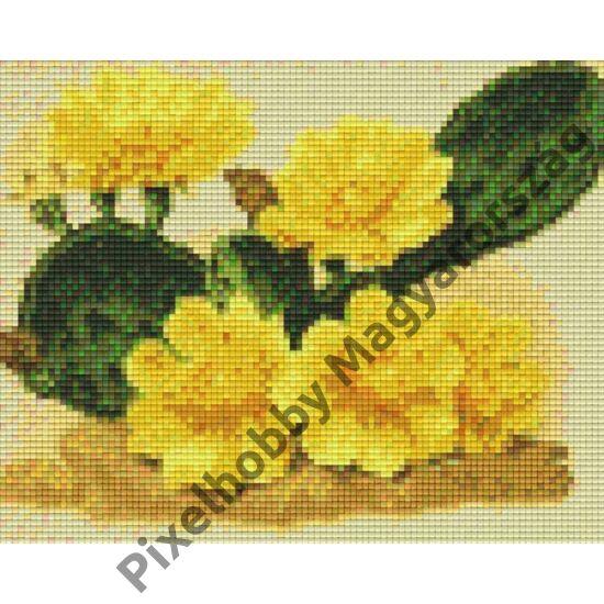 Kaktusz sárga virágokkal (25,4x20,3cm)