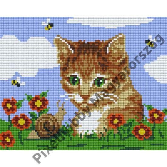 Cat Slag (25,4x20,3cm)