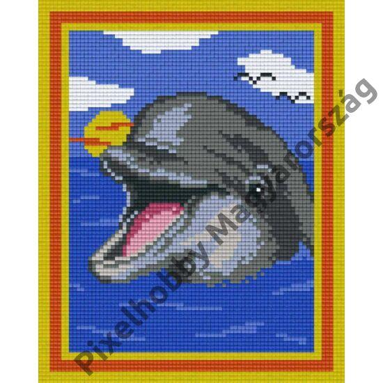 Mosolygó delfin (20,3x25,4cm)