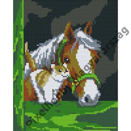 Ló cicával (20,3x25,4cm)