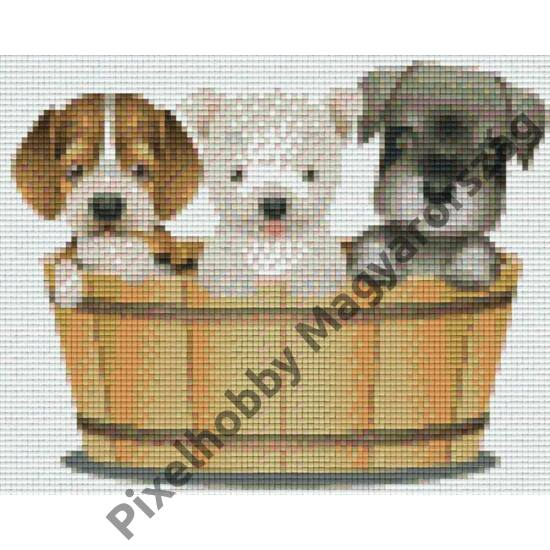 Három kutya (25,4x20,3cm)