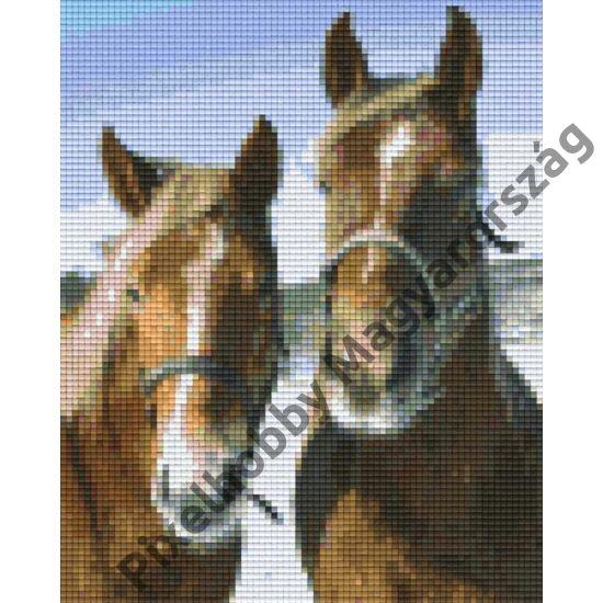 Brown thoroughbred horses (20,3x25,4cm)