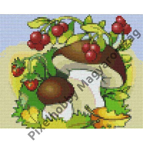 Bogyós gyümölcsök (25,4x20,3cm)