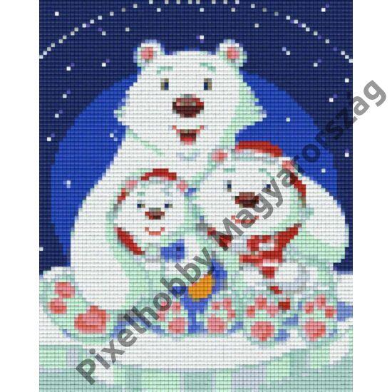 Jegesmedve család 1 (20,3x25,4cm)