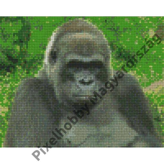 Gorilla (25,4x20,3cm)