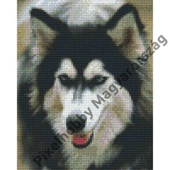Husky (20,3x25,4cm)