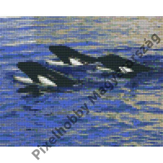 Delfinek (25,4x20,3cm)