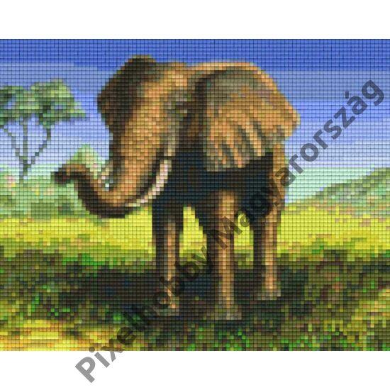 Elefánt 3 (25,4x20,3cm)